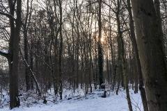 Schnee in Köln Vogelsang 2019 • Foto: NINA SIMONE PLUM